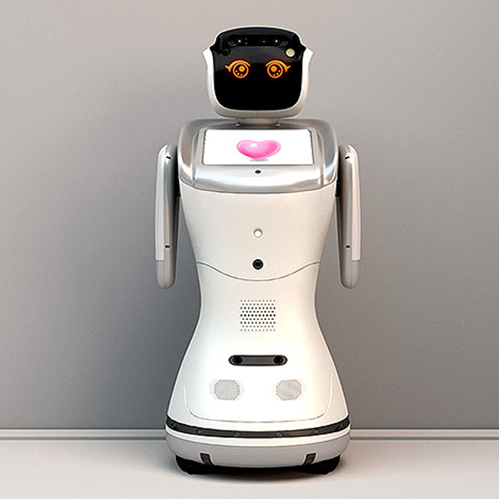 Sanbot Elf Home Robot